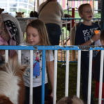 kid at petting area